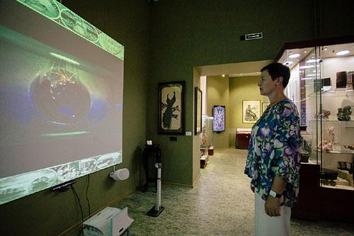 Интерактивная витрина в музее