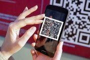 Wildberries запустил оплату интернет-заказов через Систему быстрых платежей