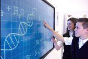 Рынок интерактивных панелей вырастет на 34% к 2023 году
